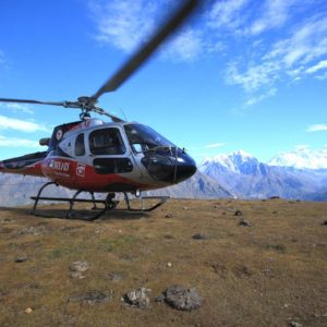 Chandigarh Rose Fest Helicopter Tickets